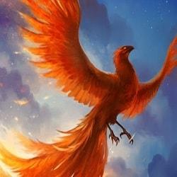 mơ thấy chim phượng hoàng