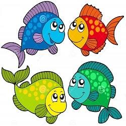 Mơ thấy cá, giải mã giấc chiêm bao thấy các loài cá